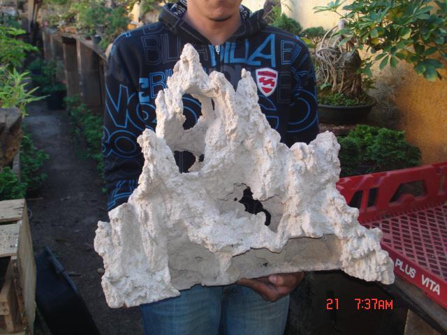 pedras-cimento-e-kaede-dr-paulo-002