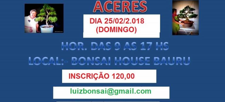 CURSO DE PINHEIRO NEGRO E ACERES 2018